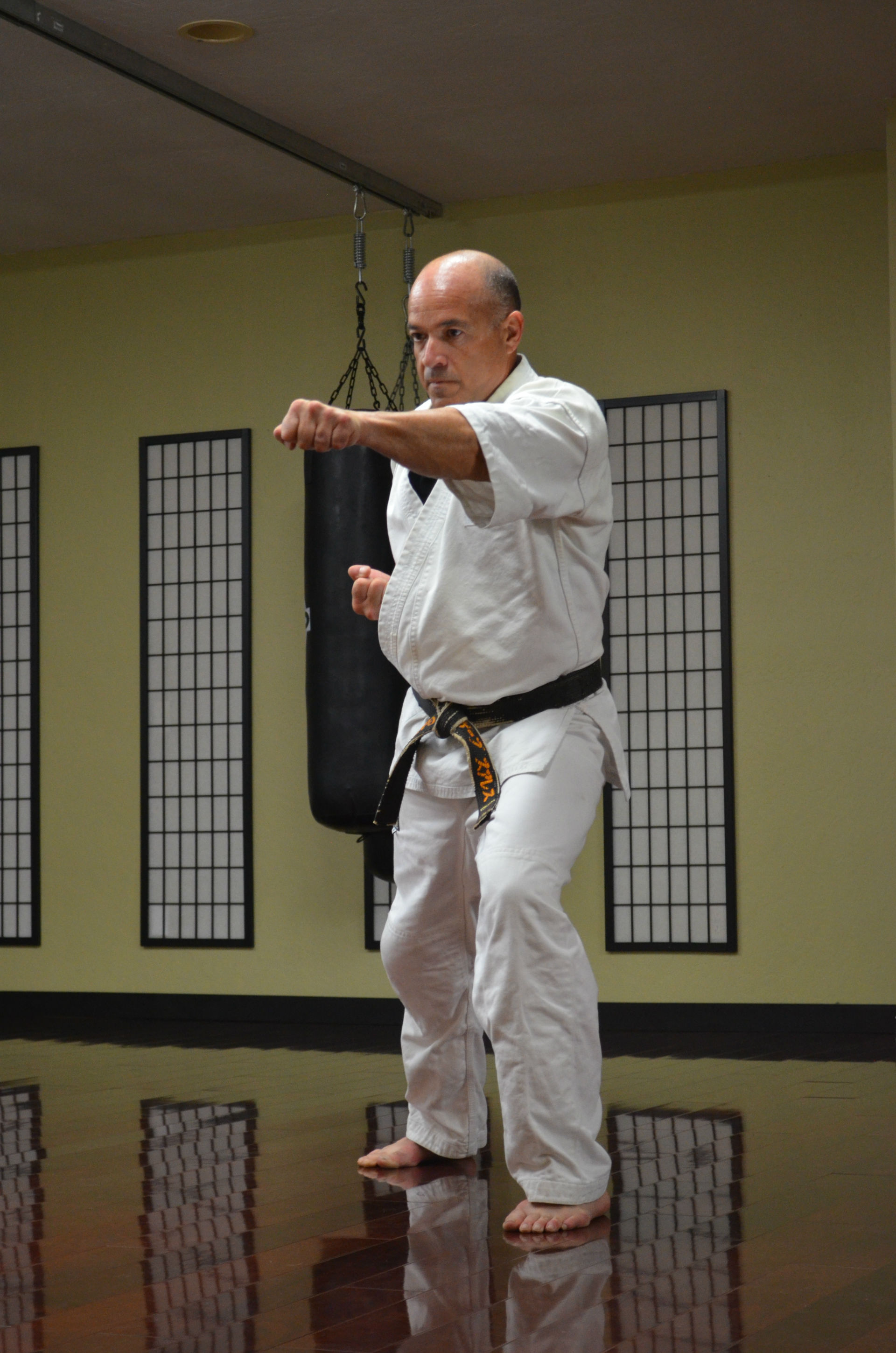 "Pistol Kata - ""Diagonal Lines"" - In Detail - header image"